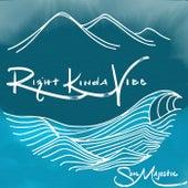 Right Kinda Vibe - Single by Soul Majestic