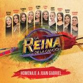 La Reina De La Canción - Homenaje A Juan Gabriel by Various Artists