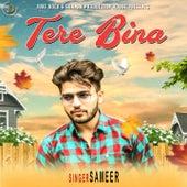 Tere Bina by Sameer
