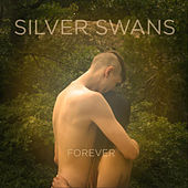 Forever by Silver Swans