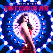 Turn It Down For What (The Remixes) by Stonebridge