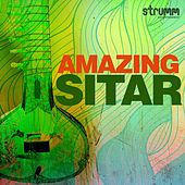 Amazing Sitar by Various Artists