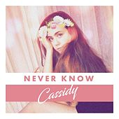 Never Know by Cassidy
