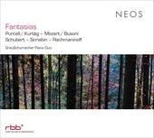 Fantasias by Grauschumacher Piano Duo