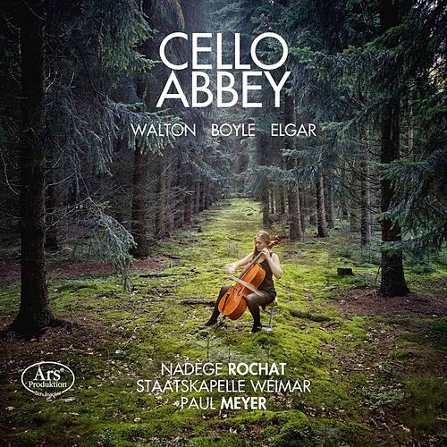 Cello Abbey by Nadège Rochat