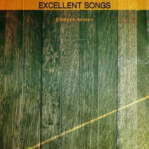 Excellent Songs de Elmore James