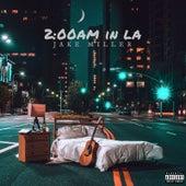 2:00am in LA by Jake Miller
