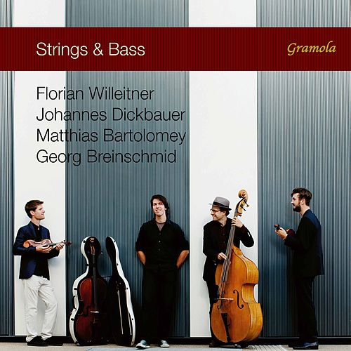 Strings & Bass by The Strings