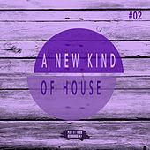 A New Kind of House, Vol. 2 by Various Artists