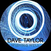 Wishing Well by Dave Taylor