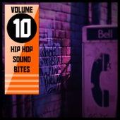 Hip Hop Sound Bites,Vol. 10 by Various Artists
