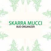 Bud Organizer by Skarra Mucci