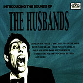 Play & Download Introducing the Sounds Of... by The Husbands | Napster