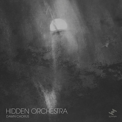 Dawn Chorus by Hidden Orchestra
