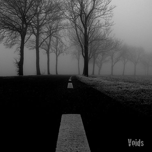 Laboratory of the devil by The Voids