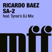 Sa-2 by Ricardo Baez