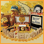 Mister Mellow by Washed Out