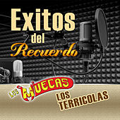 Exitos Del Recuerdo by Various Artists