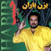Bezan Baran by Habib