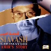 Amir's Story by Siavash Ghomayshi