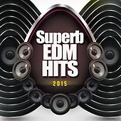 Superb EDM Hits 2015 by Various Artists