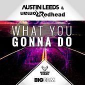 What You Gonna Do by Austin Leeds