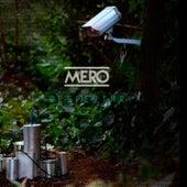 Despertar by Mero