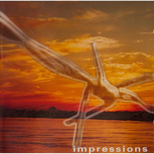 Impressions by Access Denied