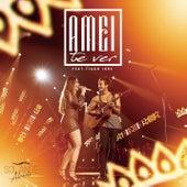 Amei Te Ver (Ao Vivo) by Solange Almeida