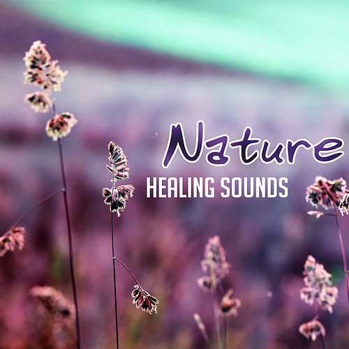 Nature Healing Sounds – Calming New Age Music, Rest with Nature Waves, Healing Therapy, Easy Listening by Nature Sounds (1)