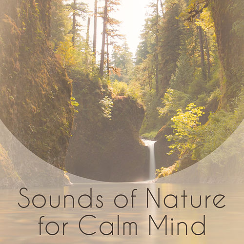 Sounds of Nature for Calm Mind – New Age Calm Sounds, Soothing Music, Nature Waves, Rest & Relax by Sounds Of Nature