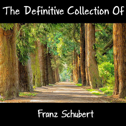 The Definitive Collection Of Franz Schubert by Franz Schubert