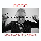 Like I Love the Mash by Picco