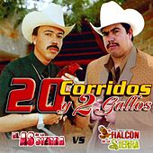 20 Corridos y 2 Gallos by Various Artists