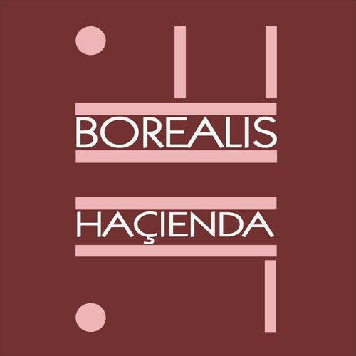 Haçienda by Borealis