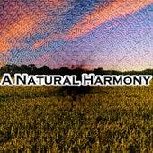 A Natural Harmony de The Rest