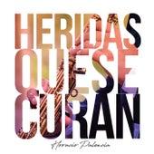 Heridas Que Se Curan by Horacio Palencia