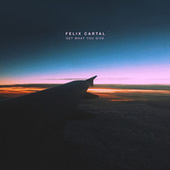 Get What You Give von Felix Cartal