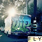 Fly (feat. Amie M.) by DLP