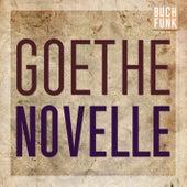 Novelle (Ungekürzt) von Johann Wolfgang von Goethe