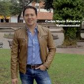 Vallenateando by Carlos Mario Zabaleta