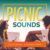 Picnic Sounds - Electronic Summer Vibes by Various Artists
