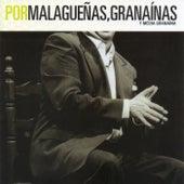 FlamencoPassion. Por Malagueñas, Granaínas y Media Granaína by Various Artists