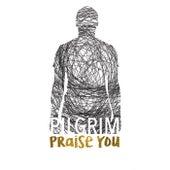Praise You by Pilgrim