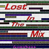 Lost In The Mix by Gymshoes