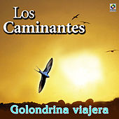 Play & Download Golondrina Viajera by Los Caminantes | Napster