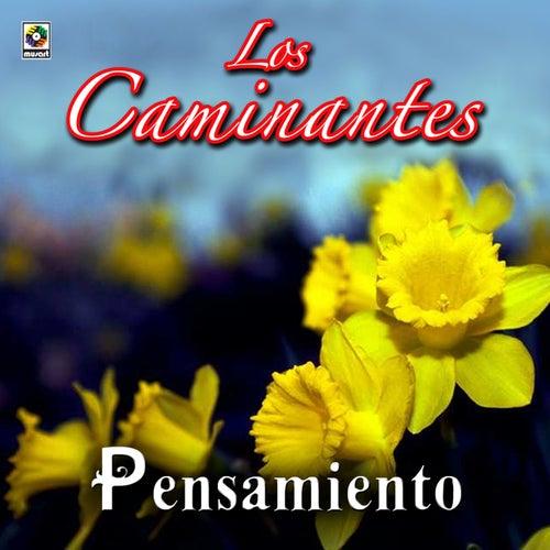 Play & Download Pensamiento by Los Caminantes | Napster