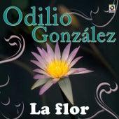 Play & Download La Flor by Odilio Gonzalez | Napster