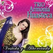 Play & Download Vestida Y Alborotada by Trio Armonia Huasteca | Napster