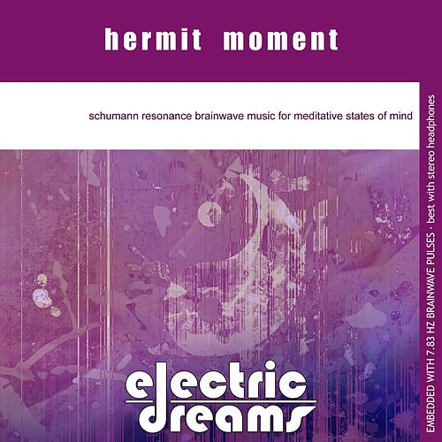 Hermit Moment by Electric Dreams